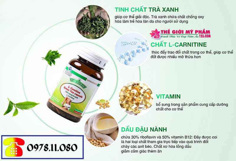 Thành phần L-Carnitine Green Tea Capsule