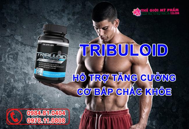 Công dụng Tribuloid